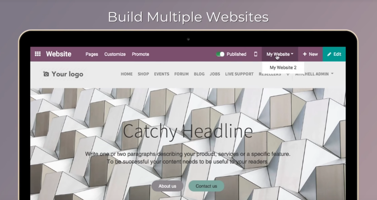 Odoo12-Multiwebsites